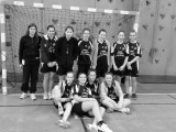 Section Handball - collège Saint Joseph Bain-de-Bretagne