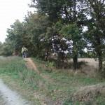 vtt-balade-nature-college-saint-joseph-bain-de-bretagne-dispositif-ulis-1