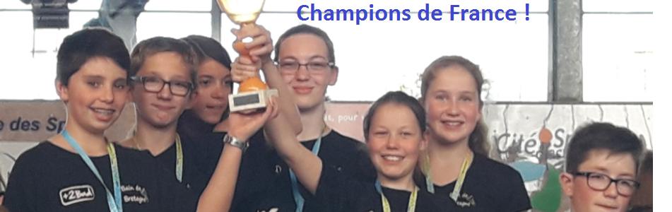 Champions de France Bad