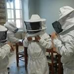 Ruche au collège Bain-de-Bretagne (2)