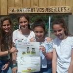 Concours abeilles Ruches (1)
