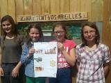 Concours abeilles Ruches (3)
