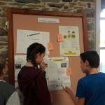 Concours affiches ruches Bain de Bretagne (1)
