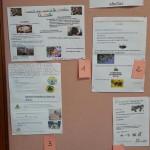 Concours affiches ruches Bain de Bretagne (2)