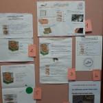 Concours affiches ruches Bain de Bretagne (3)