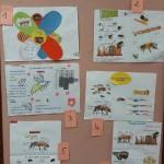 Concours affiches ruches Bain de Bretagne (5)
