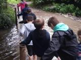 Journée intégration 6ème jardins de Brocéliande (2)