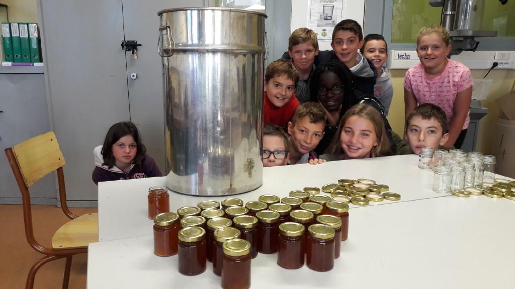 récolte de miel Bain-de-Bretagne (3)