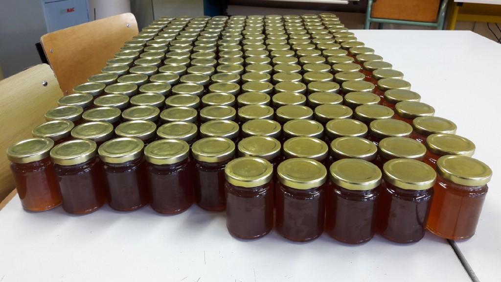 récolte de miel Bain-de-Bretagne (4)