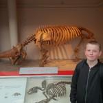 Musées londoniens (5)