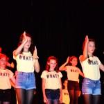 Fête du collège Bain-de-Bretagne (17)