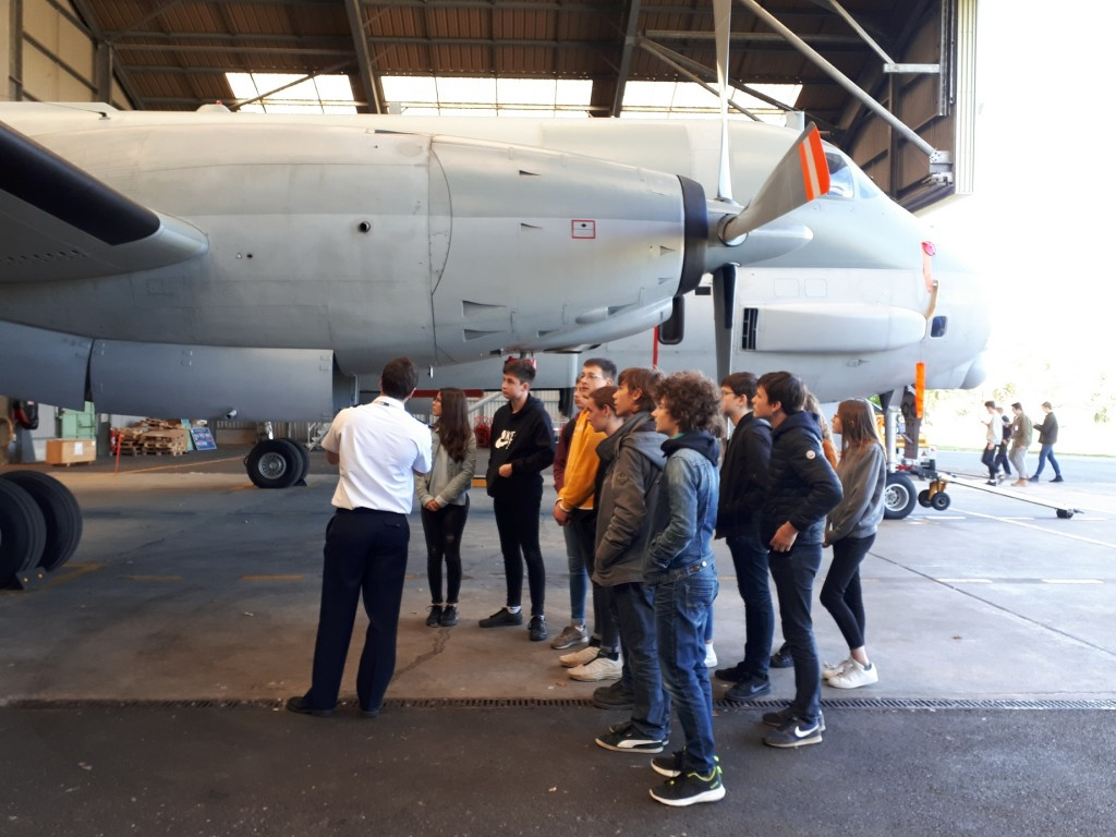 Pilote et groupe BIA