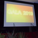 Soirée de gala 2019 Brevet des collèges Bain-de-Bretagne (8)