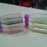EISTM Micro algues Bain-de-Bretagne