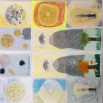 Projet lumière Arts Plastiques collège Bain-de-Bretagne 6ème (22)