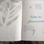 Les arbres arts plastiques collège Saint Joseph Bain-de-Bretagne (23)