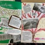Les arbres arts plastiques collège Saint Joseph Bain-de-Bretagne (28)