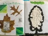 Les arbres arts plastiques collège Saint Joseph Bain-de-Bretagne (3)