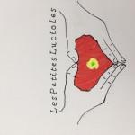 Projet Logo association Les petites lucioles - collège Bain-de-Bretagne (12)