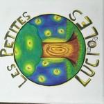 Projet Logo association Les petites lucioles - collège Bain-de-Bretagne (14)
