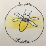 Projet Logo association Les petites lucioles - collège Bain-de-Bretagne (33)