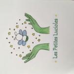 Projet Logo association Les petites lucioles - collège Bain-de-Bretagne (8)