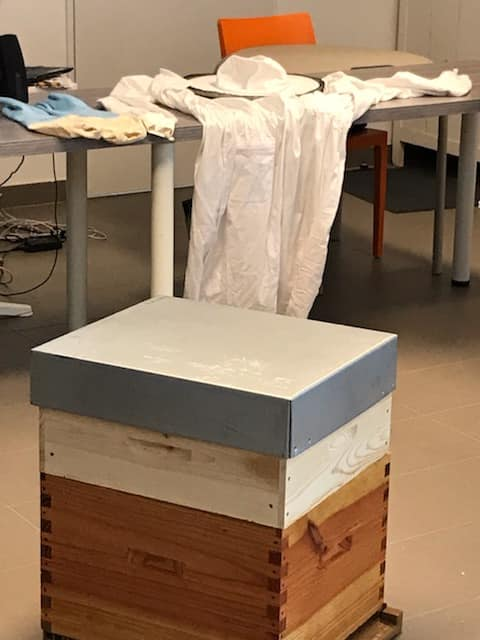 apiculteur collège Bain-de-Bretagne (6)